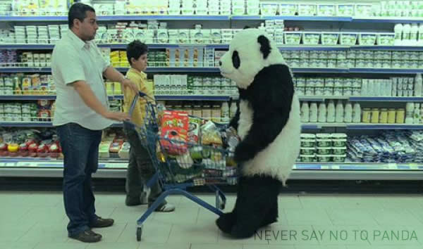 never say no to google panda